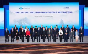 APEC-2014-CSOMgroup-photo1c